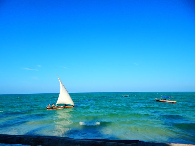 Travel Zanzibar_Tanzania Zanzibarisland Beauty In Nature Blue Boat Clear Sky Copy Space Day Horizon Over Water Mode Of Transport Nature Nautical Vessel No People Outdoors Sailboat Sailing Scenics Sea Sky Tranquil Scene Tranquility Transportation Travel Destinations Water Waterfront