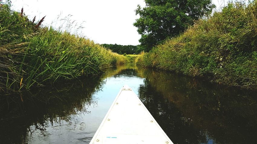 Paddling in Denmark Paddling Nature Nature Photography Water Reflections Denmark Boat Sailing Water River Riverscape Landscape Samsung Galaxy S7