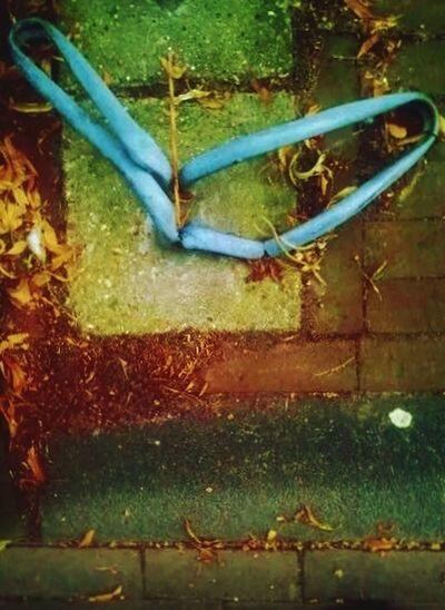 Vandalism , No Bikes No More