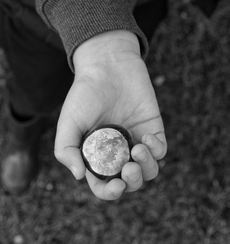 Conkers Human Hand Human Body Part Holding Conker Autumn Childhood Black & White EyeEmBestPics EyeEm Best Shots EyeEm Nature Lover One Person Close-up Real People Day People