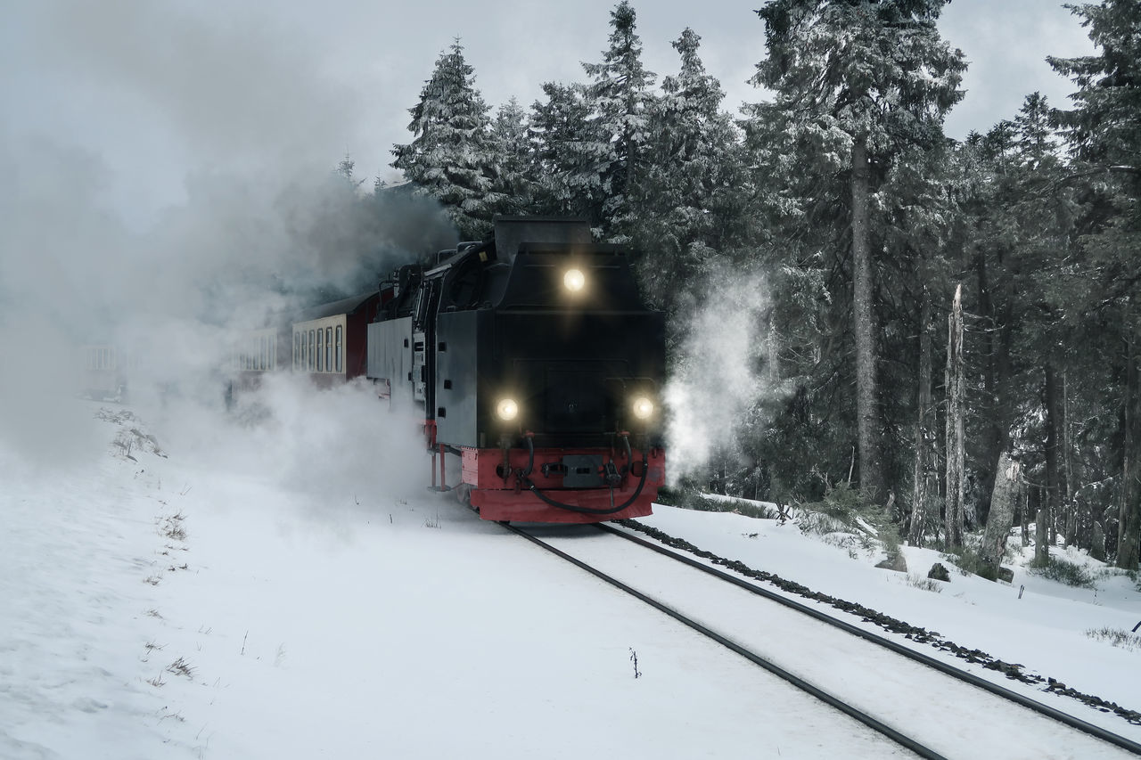 Steam Train By Trees During Winter