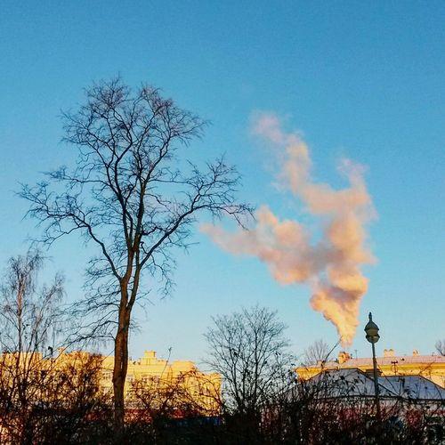 Winter December December 2015 Sky Smoke Morning Morning Sky Sity