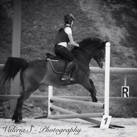 Dance with he, Fly with he. My babe, my horse, all my life❤️❤️ Hello World That's Me Taking Photos Self Portrait
