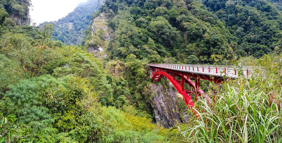 Wuling Mountains tour Red Bridge Woonhong Climb Mountain View Nantou,Taiwan Taiwan Taroko Taroko National Park Mountain Mountain Peak Mountain Range Mountains Mountains And Sky Puli Sea Of Cloud Sea Of clouds Steep Taroko Gorge Wuling Mountain Red Nature Green Color Bridge - Man Made Structure Architecture Built Structure Tree Beauty In Nature