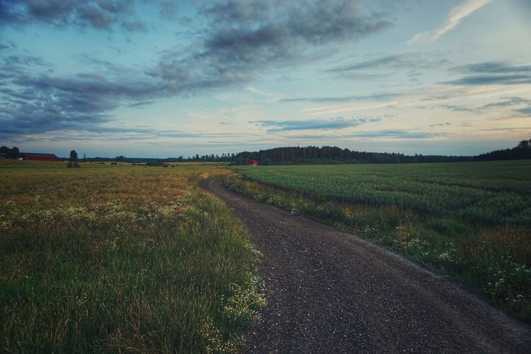 2019 Niklas Storm Juli Rural Scene Sunset Agriculture Field Cereal Plant Road Crop  Farm Sky Grass vanishing point Empty Road The Way Forward Diminishing Perspective Romantic Sky My Best Photo The Great Outdoors - 2019 EyeEm Awards