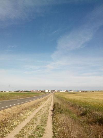 2015  Camino CaminodeSantiago El Camino De Santiago Jakobsweg Pilgern Pilgerschaft Pilgrimage Road Sommer Straße Summer Wandern Way Weg Wege Und Strassen