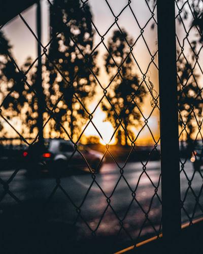 Sunset seen through chainlink fence