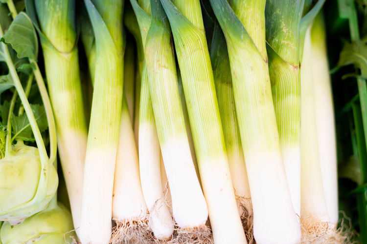 Close-up Day Food Food And Drink For Sale Freshness Green Color Healthy Eating Market Nature No People Organic Outdoors Plant Raw Food Root Vegetable Spring Onion Still Life Vegetable Wellbeing