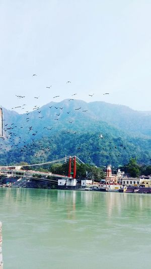 Travel Destinations Cultures Architecture Cloud - Sky Outdoors Lakshmanjhula Cityscape Uttarakhand Nature Freshness Eyeemphotography EyeEmBestPics EyeEmNewHere Birdwatching Sky Holy Week Ramjhula Rishikeshtrip