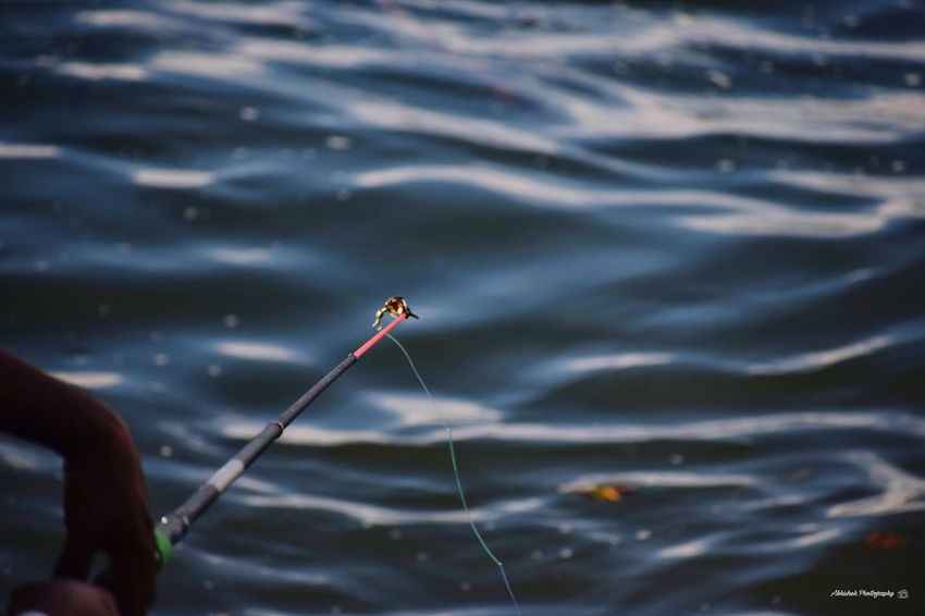 Fishing Line Hand Fisherman Water Sea Waves Waves, Ocean, Nature Clicked On Nikon D3300 Water Fishing Close-up Fishing Rod