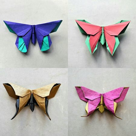 Butterfly collection (Michael La Fosse) folded by me Origami ArtWork Butterflies Art My Hobby Art Deco Papillon Getting Inspired Check This Out Decoration