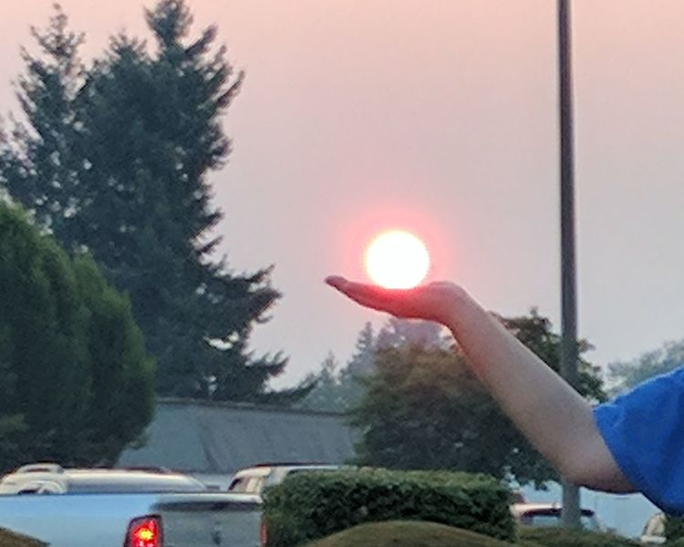 With so many forest fires.... It makes the sky so smoky. It does allow for awesome pictures though! Adult Car One Person Day Sky Smoky Sky Smoky Sunset Smoked Out Holding The Sun Yelm, WA Having Fun Taking Pictures EyeEm Sun Watch Eyeem Sun Photography Filtered Sun Look At That Adult Missing The Rain Poor Air Quality