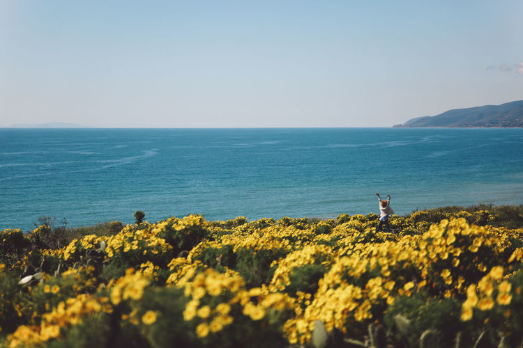 Distant view of mid adult woman jumping amidst yellow flowers against sea
