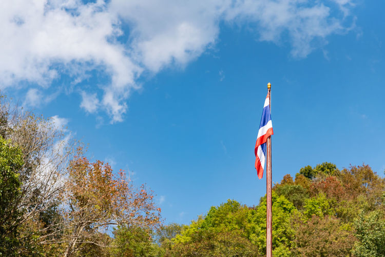 Low angle view of flag amidst trees against blue sky