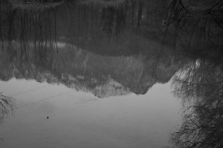 High angle view of a lake