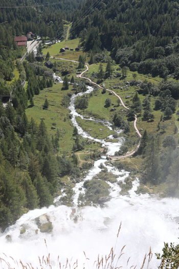 High angle view of waterfall amidst trees