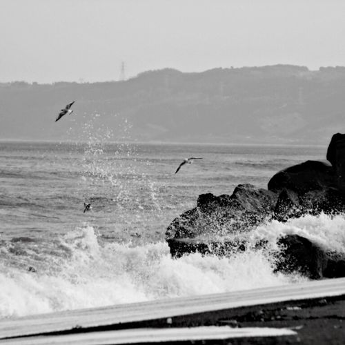 Akçakoca Sahili...black and white First Eyeem Photo Taking Photos Hello World