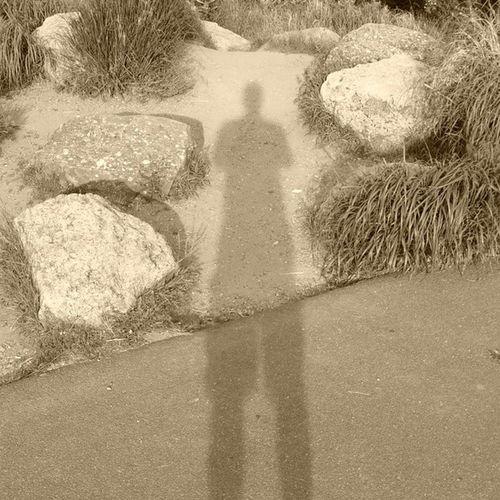Summersunset Shadow