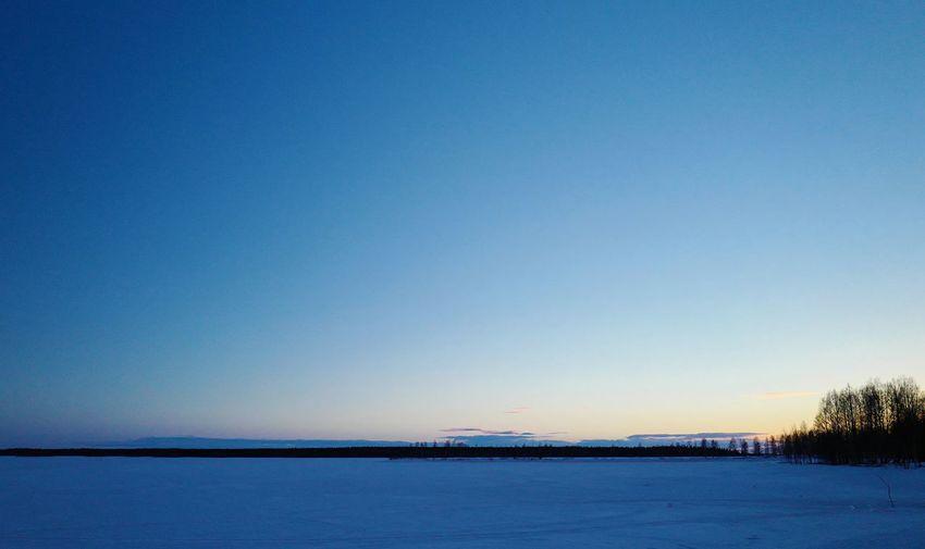 Blue Blue Sky Deepblue Dusk Forest Horizon Silhouette Vast Landscape Vastness Wide