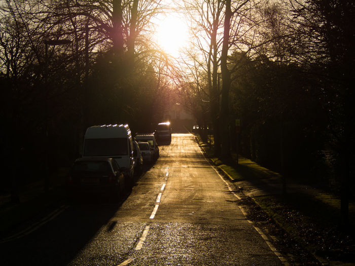 Road amidst trees in city at sunset
