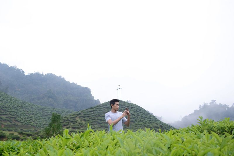 Man Photographing With Mobile Phone While Standing Amidst Tea Crops On Field Against Clear Sky