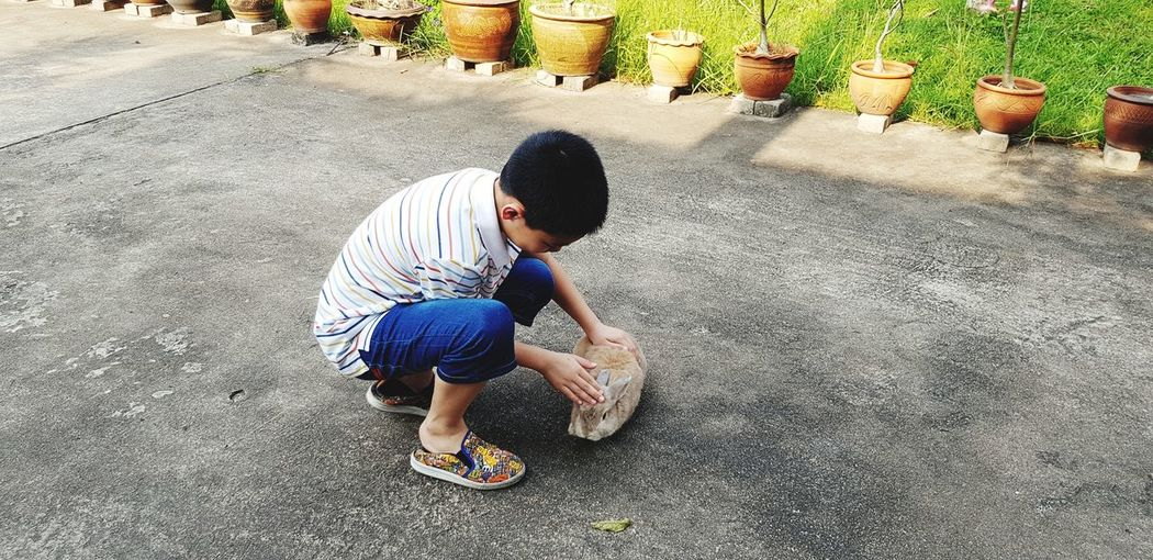 Full Length Of Boy Petting Rabbit On Road