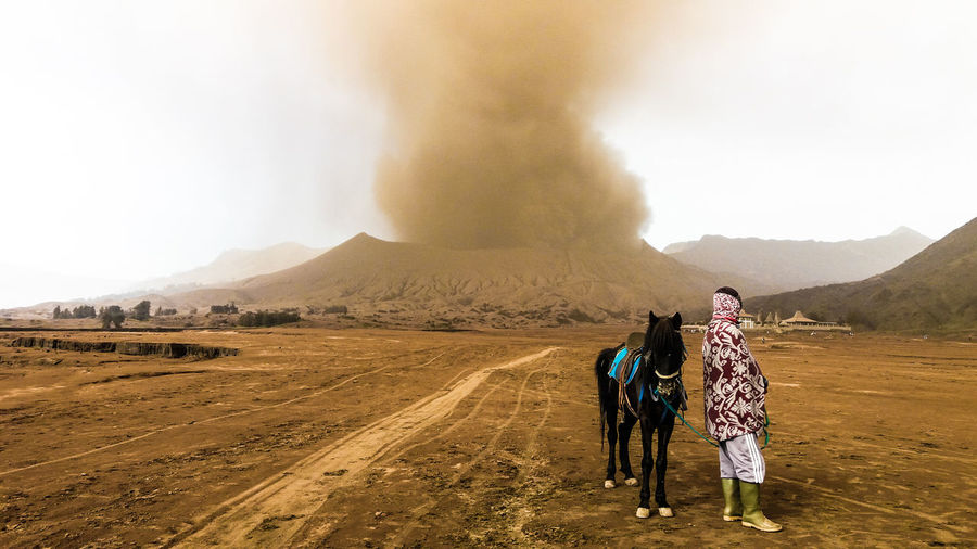 Man And Horse Standing At Bromo-Tengger-Semeru National Park