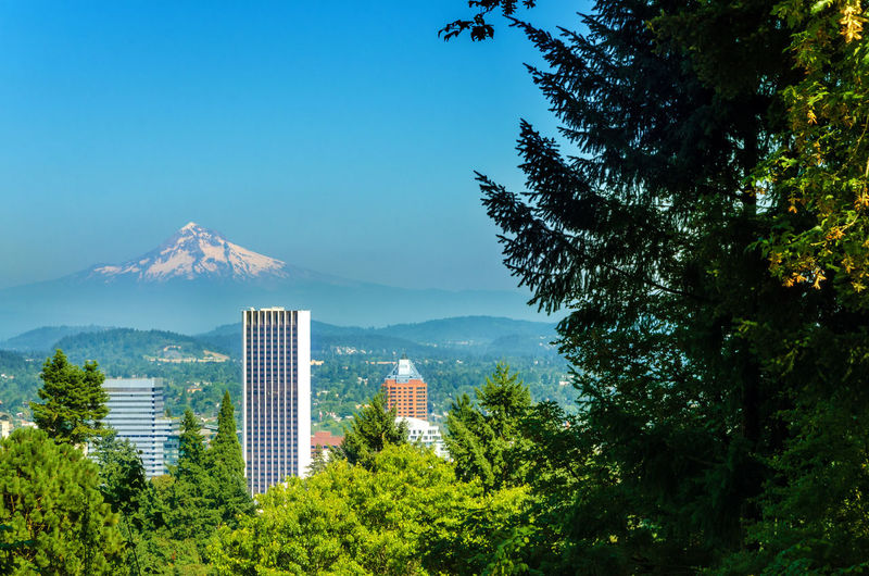 Mount Hood rising above downtown Portland, Oregon America Architecture Building Business Center City Cityscape Downtown Hood Landmark Metropolis Modern Mount Mountain Northwest Oregon Outodoors Pacific Portland Structure Tourism Tree United States Urban USA