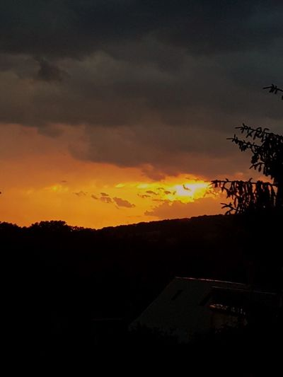 Sonnenuntergang First Eyeem Photo