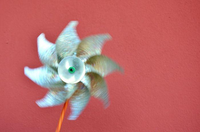 Igw_italia Igw_colors Pocket_colors Artistic Loves_details Pocket_family