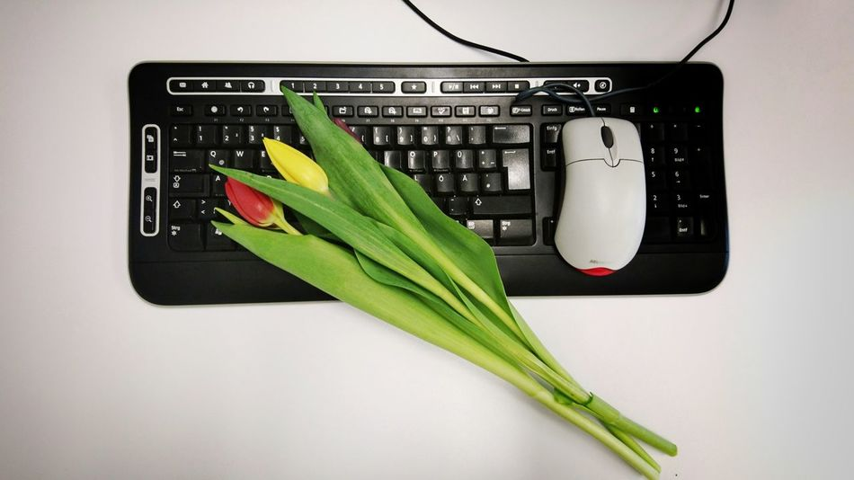 """""""Happy women's day"""" - That's what my boss said this morning. Nice :-) Keyboard Working Working Place Women's Day Tulips Officelife Office Interior Working Woman Working Women Spring Flowers Technology Computer Close-up Green Color Network Security"""