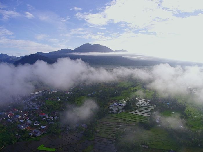 mount Ambang view @ altitude 200mtrs DJI X Eyeem EyeEm Best Shots EyeEmNewHere EyeEm Selects Dronephotography Midrone No People Fog Agriculture Hill Landscape Cloud - Sky Outdoors Sky Shades Of Winter An Eye For Travel