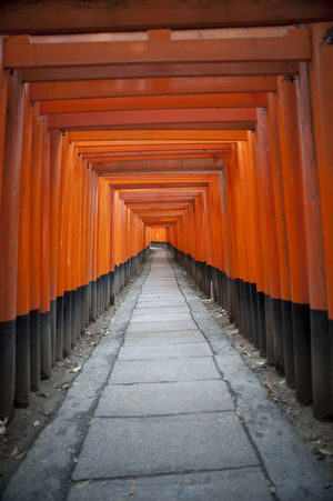 a walkway through a tunnel of torri gates at the Fushimi Inari-taisha shrine Distance Empty Footpath Gate Inari Kyoto Offerings Pedestrian Receding Red Religious  Shrine Straight Structures Temple Torii Gates Tunnel Walkway Wooden