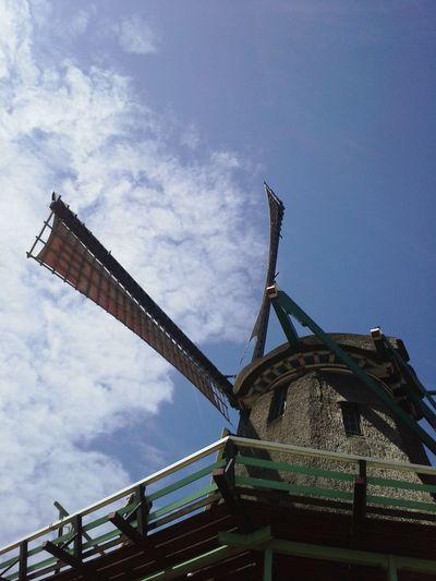 Wind Mill Summer Family Zwanzig15