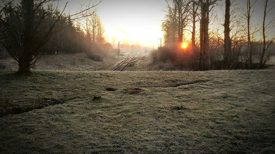 Wschód słońca nad torami Słońce Wschódsłońca Tory