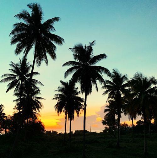 Sunrise in Bang