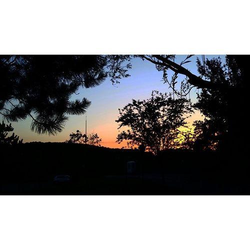 Sunsetporn Beautiful Sunset_madness Nature skylovers sunset dusk photowall sol tagsta sunspotters sunsethunter summer love sunsetsniper tagsta_nature bright primeshots tagstagram sundown sky dayshots sunrise sunset_pics sunset_united cloudporn iskygram sun skycraber instagain