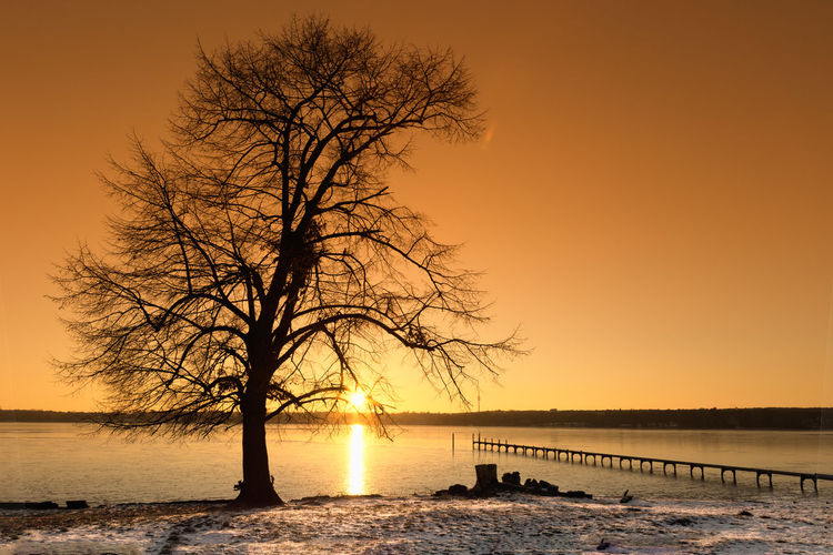 Dreaming Life Philosophy Bare Tree Beauty In Nature Branch Cold Temperature Day Future Horizon Over Water Nature No People Orange Color Outdoors Scenics Sea Silence Silhouette Sky Sunset Tranquil Scene Tranquility Tree Water Winter