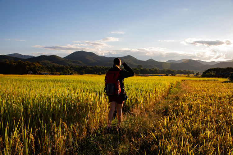 Rear view of woman standing at rice paddy against sky