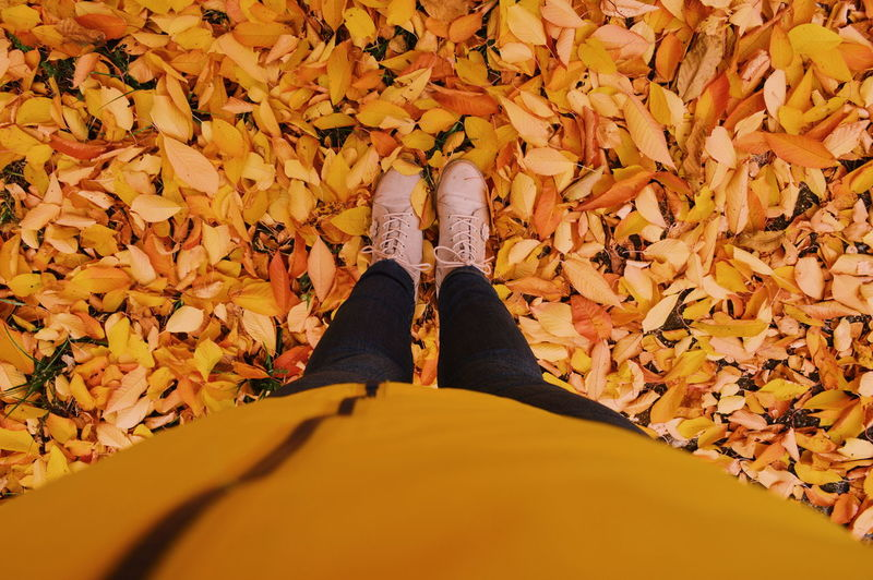 Low section of woman standing on yellow autumn leaves
