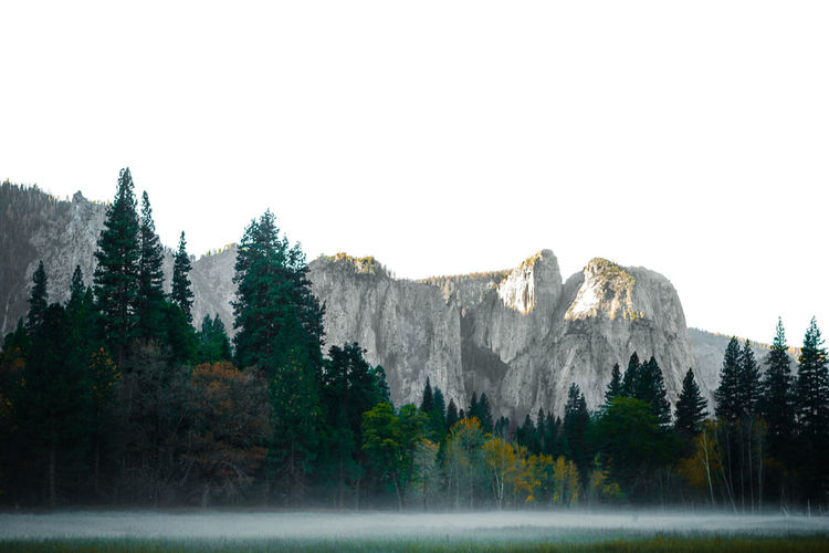 Yosemite Village Scenic mountain region comprising the Sierra Nevada Range & Yosemite Valley of the Merced river; famous for giant sequoias, huge rock domes & peaks. 30mm/ƒ/5.6/1/30s/ISO 100 Day Forest Landscape Mountain Nature No People Outdoors Tree Water