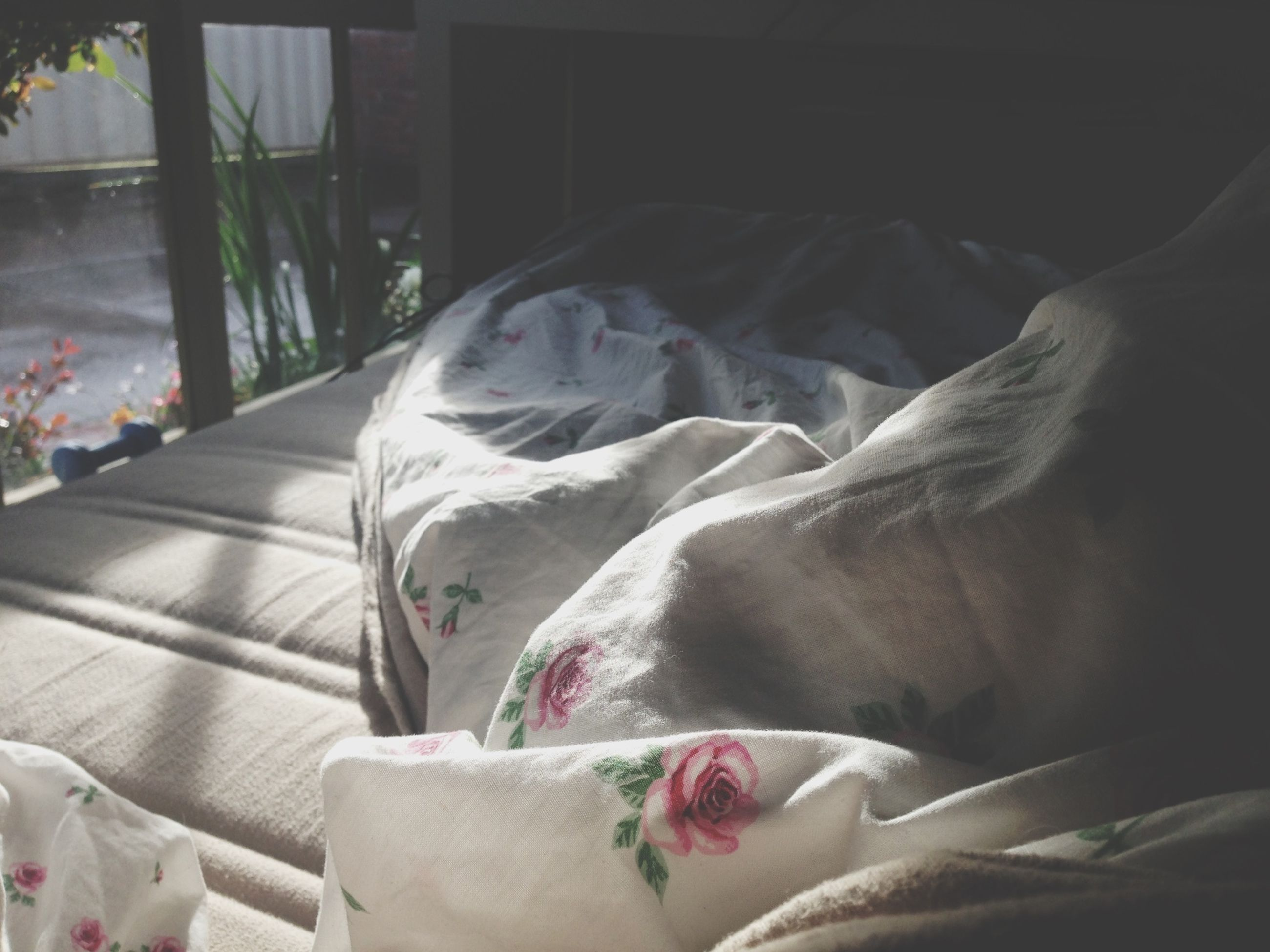 indoors, bed, relaxation, sofa, resting, bedroom, pillow, sleeping, blanket, comfortable, cushion, home interior, chair, sheet, lying down, fabric, domestic animals, textile, absence, curtain