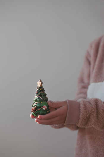 Midsection of man holding christmas tree