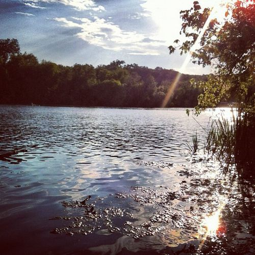Ladybirdlake Mopacbridge Austin Lake austin atx water sunset nature beauty outdoors