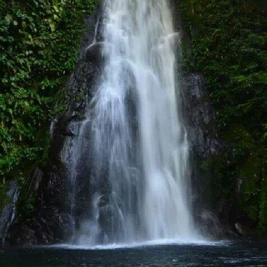 Naturism. Haha <3 MtIsarog ChasingWaterfalls Beauty Nature