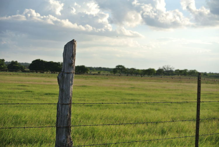 Land Landscape Field Plant Sky Environment Tranquil Scene Grass Tranquility Fence Nature Green Color Beauty In Nature Outdoors Wooden Post Rustic Ranch Fashion Fredericksburg Texas Clouds