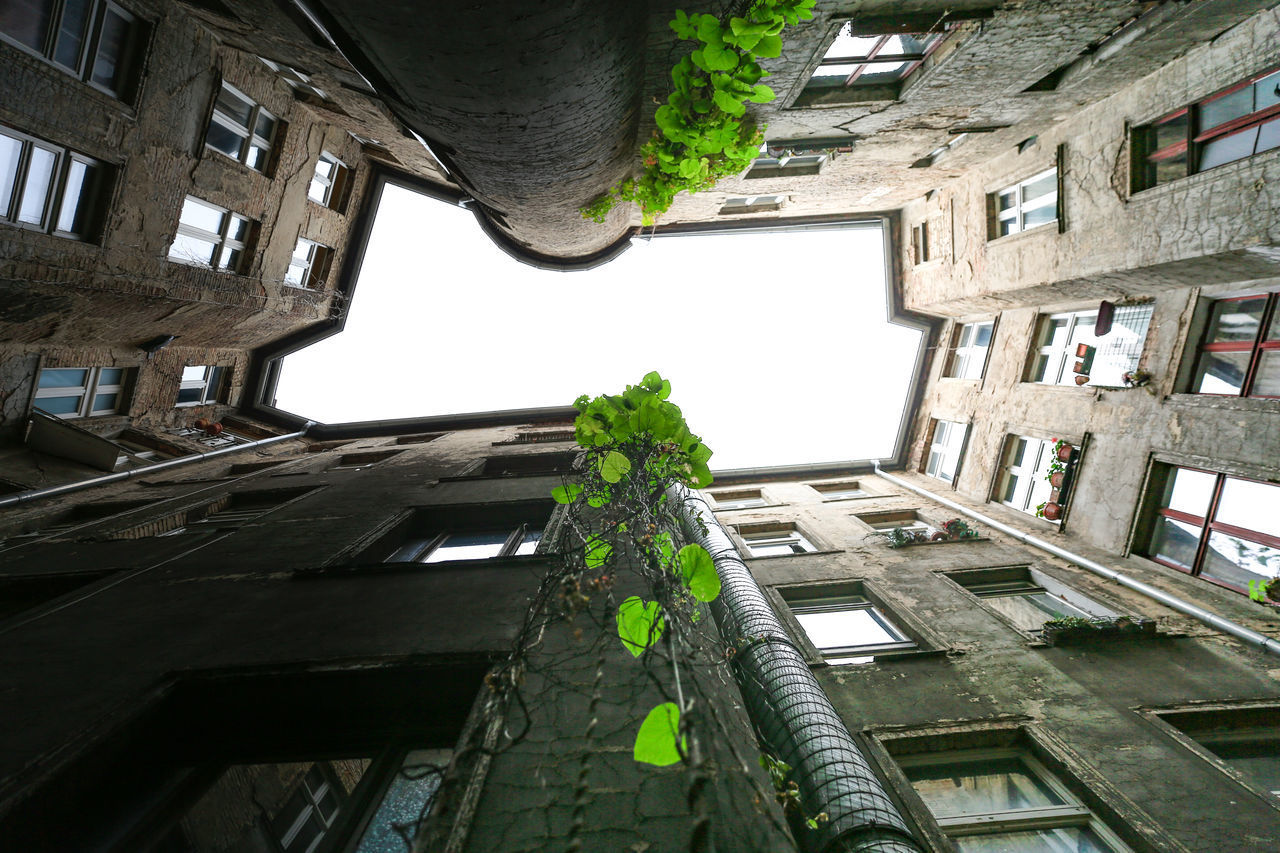 built structure, architecture, building exterior, building, window, low angle view, residential district, day, no people, plant, nature, growth, outdoors, abandoned, green color, house, sky, tree, apartment, city, directly below, ruined