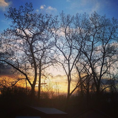 Another sunrise picture from the other morning. Sunrise Poughkeepsie Newyork Spring Sun Trees Dawn