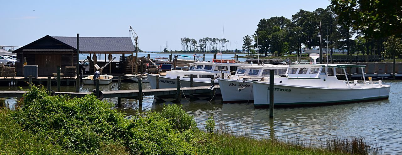 Oyster plant with boats on the Rappahannock River in Topping, VA 2catswithcameras Oyster Plant Topping, VA Boats Building Exterior Built Structure Day Moored Nautical Vessel No People Outdoors Oystering Pjpink Rappahannock River Riverbank Sky Water