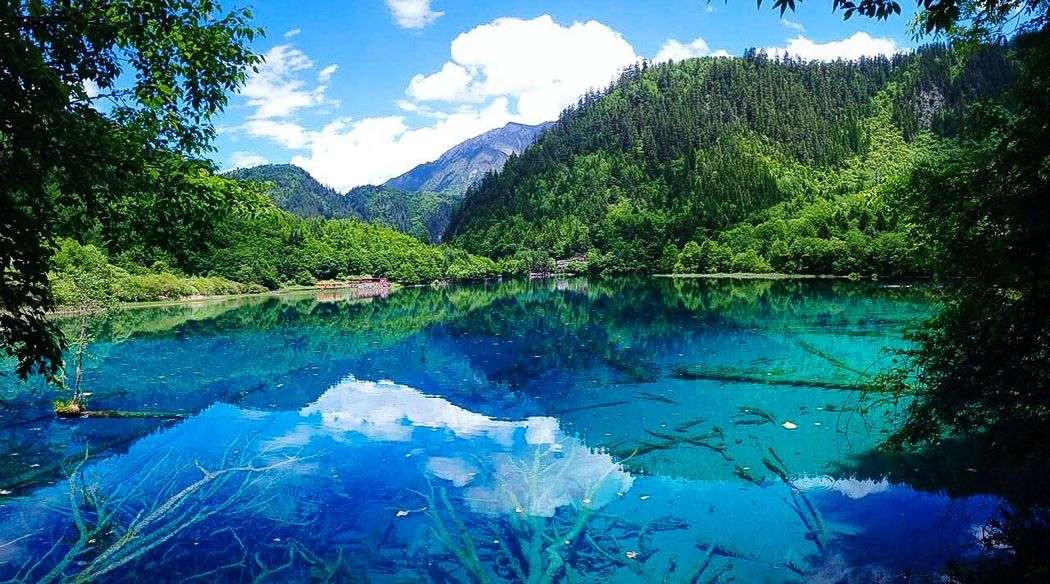 The Great Outdoors - 2016 EyeEm AwardsBreathtaking view Lake View Lakescape Jiuzhaigou Jiuzhaigou Valley Landscape_photography EyeEm Nature Lover EyeEm Best Shots EyeEm Best Shots - Nature EyeEmBestPics Eyemphotography Sky And Clouds Bluesky 🌈🌈🌈 Blue Water Naturelovers Mountains And Sky Mountain View Mountain Lake Nature_perfection Nature Harmony Check This Out!